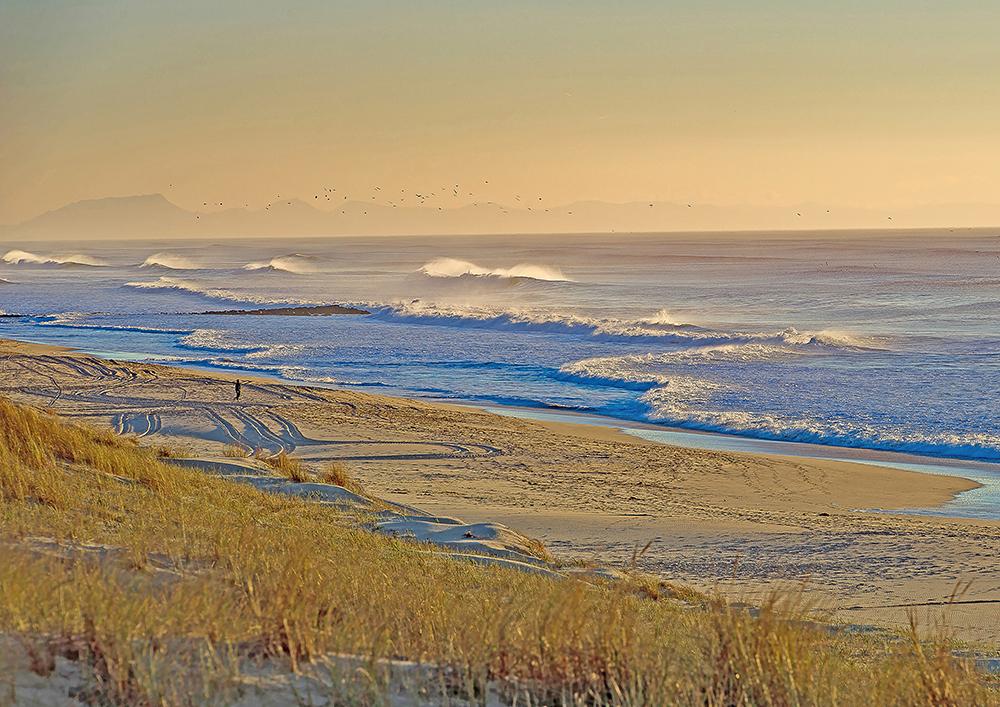 Contis, la dune, la plage, l'océan, les Pyrénées