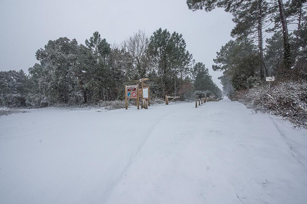 CONTIS - Piste des allemands sous la neige