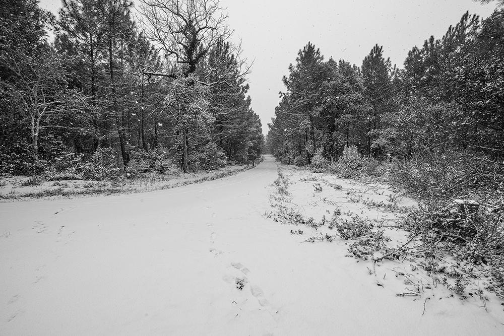 CONTIS - la Vélodyssée sous la neige