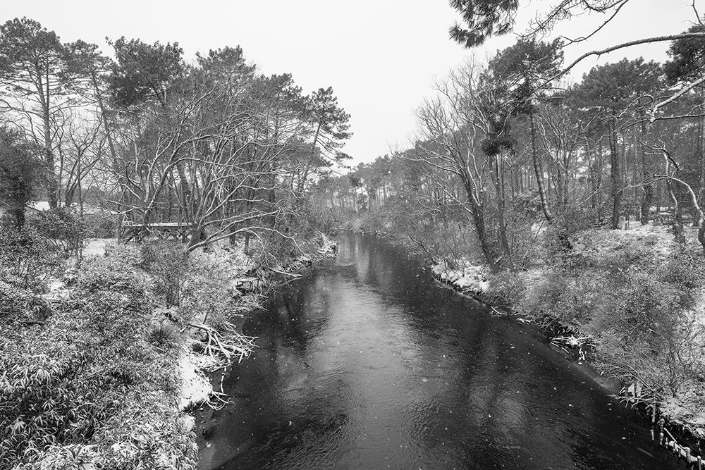 CONTIS - du pont rose sous la neige